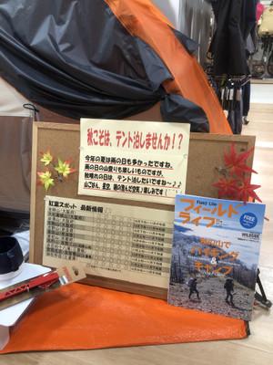 大阪の低山紅葉の見所情報