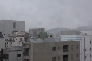 雨が続いております。
