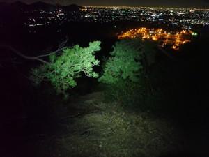 夜道とヘッドランプの明るさ
