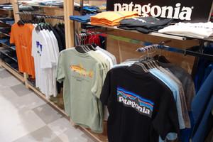 パタゴニアのTシャツ揃っています☆